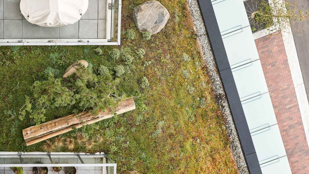 An aerial view of the Eleanore Condominium in Vancouver, BC.  Landscape design by Gauthier and Associates.