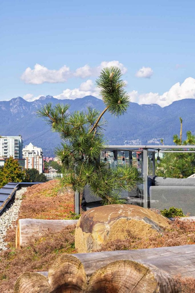 Landscape details by Gauthier and Associates at The Eleanore Condominium in Vancouver